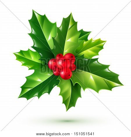 Realistic red holly berries and green leaves bunch. Vector Christmas ornament isolated on white background.