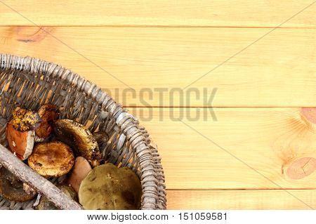 Wild mushroom harvest in retro basket on wooden background top view / autumn delicacies cooking