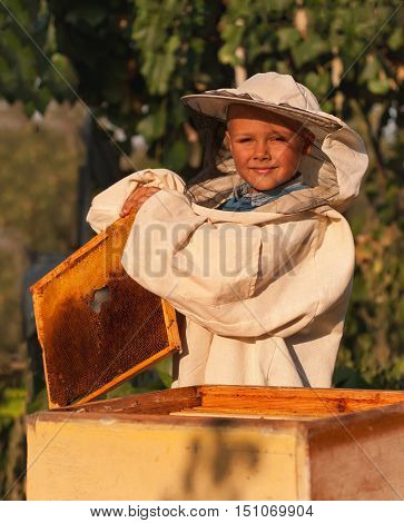 little boy beekeeper works on an apiary at hive.