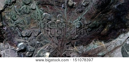 fantasy tree waste and industrial debris in the desert seen from the air, abstract naturalism, dark green texture, stone texture, lumps of earth, expressionist photography,
