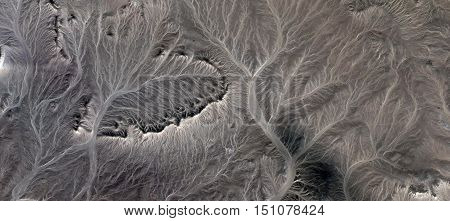 Petrified Forest, surreal landscapes of deserts of Africa from the air, mirages in the African desert, rock formations bird's eye view, textures branches, roots and trees, abstract surrealism,