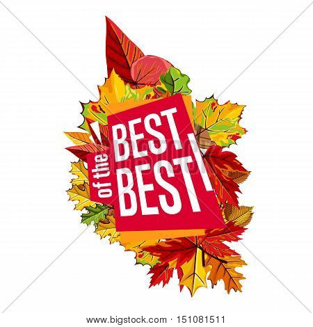 Autumn sale design template, vector illustration. Best of the best sale proposition banner with colorful leaves on white background. Autumn sale sticker. Autumn discount sticker. Sale sign. Autumn sale label. Sale sticker template.
