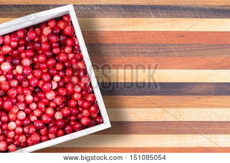 Carton Or Fresh Ripe Red Sour Cranberries