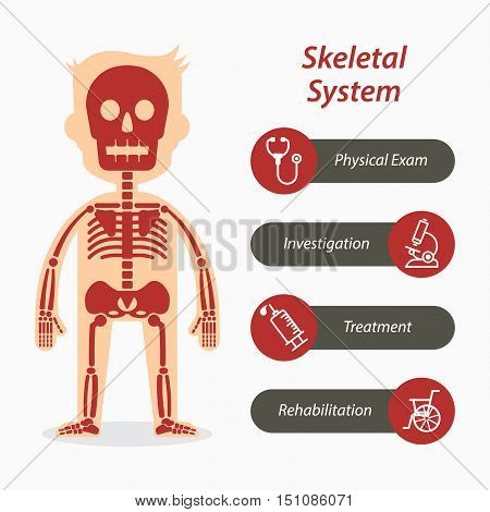 Skeletal system and medical line icon .