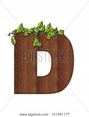Alphabet Woodsy D