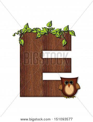 Alphabet Woodsy Owl E