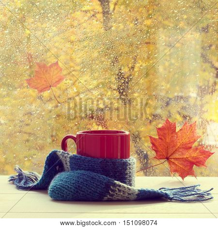 red mug in a woolen scarf is on the table by the window with traces of rain drops / autumn warming drink