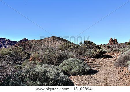 Lifeless Stony Landscape