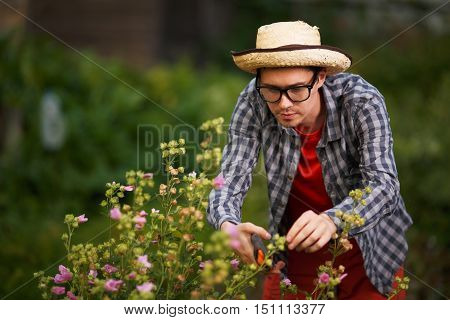 Portrait of young guy gardener in straw hat cut the bushes in the greenhouse