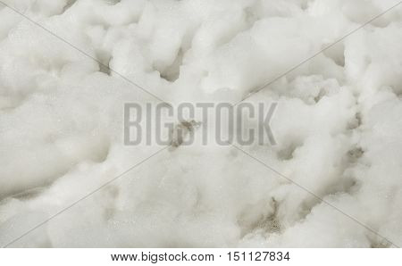 Foam texture with bubbles close-up. air background.