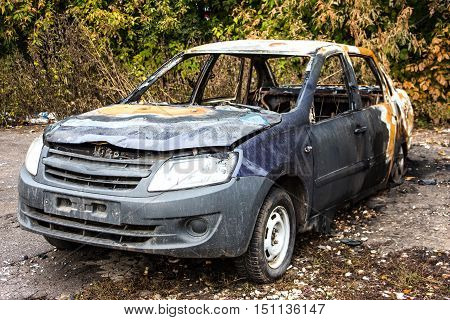 Abandoned Burnt Car. The car stands in front of thickets of bushes