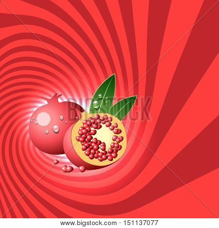 Striped spiral pomegranate confectioners background. Pomegranate fruit with water drops. Pomegranate spiral tunnel. Fruit spiral for cover design of food with pomegranate flavour. Vector illustration.