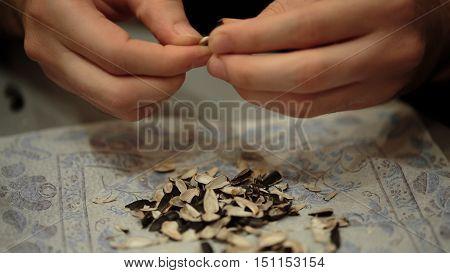 Hands clean sunflower seeds close-up. hulls of sunflower seeds