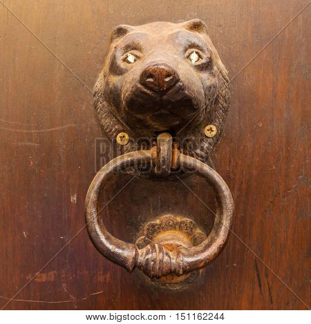 Vintage knocker in the form of a bronze bear's head