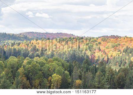 Algonquin Provincial Park in the fall season