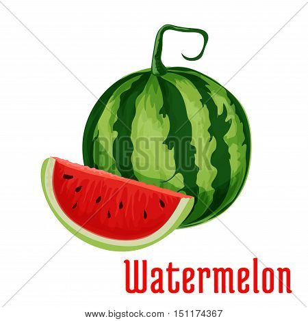 Watermelon. Isolated whole and half cut watermelons. Fruit and berry product emblem for product label, packaging sticker, grocery shop tag, farm store