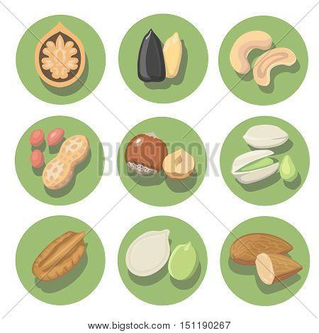 Nuts icon set. peanut, cashew, pistachio and hazelnut illustration