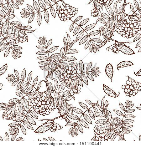 Autumn rowanberry leaves and berries. Detailed intricate hand drawing. Chaotic distribution of elements. Seamless pattern. EPS10 vector illustration.