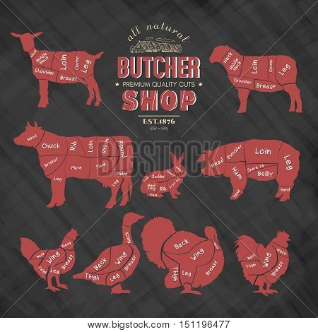 Diagrams for butcher shop. Farm animals silhouette. Cow rabbit sheep pig goat goose duck turkey chalkboard meat vector illustration