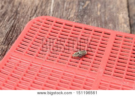 Red fly swatter. Single flyswatter made of plastic and unfailing in catching flies on Wooden floor background