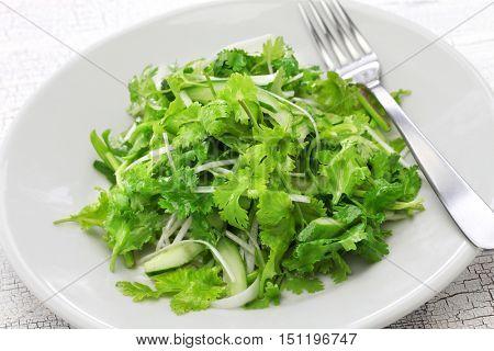 cilantro salad, coriander salad