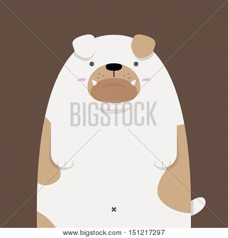 cute big fat Bulldog on dark brown background