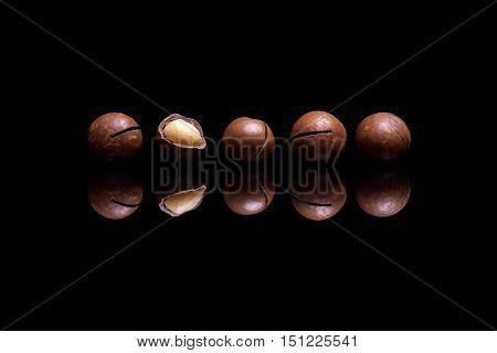 Five macadamia nuts isolated on black reflective background
