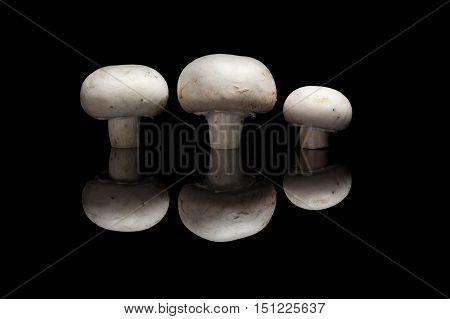 Three champignons isolated on black reflective background