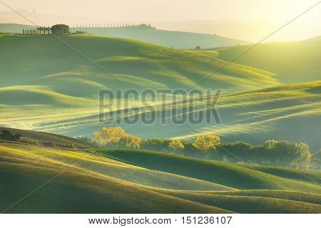 Sunny Morning tuscany nature landscape - wave hills, cypresses trees, green grass and beautiful blue sky. Tuscany, Italy, Europe