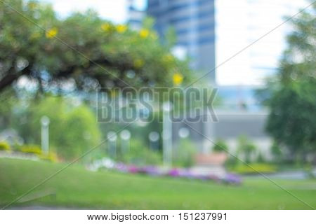 green blurred of nature background / Abstract nature background /Blurred park, natural background / green bokeh natural background / abstract nature background not in sharpness, a series of images