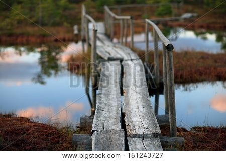 Wooden bridge with a handrail above the water in the swamp with reflection of clouds in the sky
