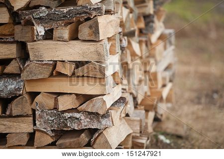 Wood Fuel For Energy Industry