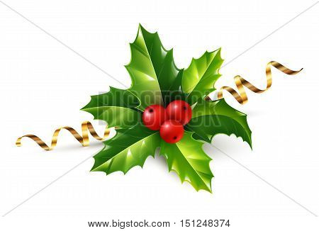 Vector realistic holly Christmas ornament. Holly green leaves and red berries with golden serpentine ribbon isolated on white background.