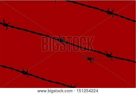 Black spider moving among barbed wires over a red background.