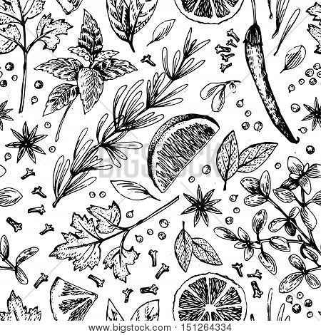 Vector seamless pattern with hand drawn lime and spices. Half lime leaf spices and seed sketch. Engraved style illustration. Detailed citrus drawing.