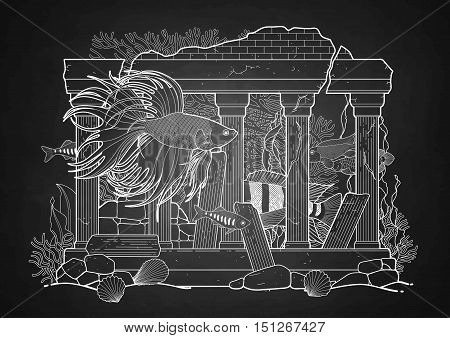 Graphic aquarium fish with architectural sculpture drawn in line art style. Under water scenery isolated on the chalkboard. Ancient Roman architecture.