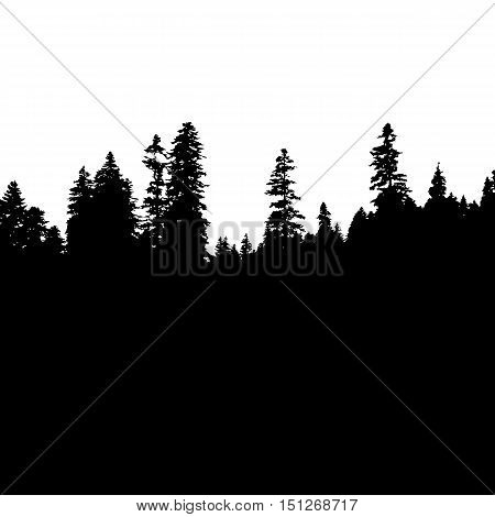 Panoramic view of the forest. Tree Silhouette. Vector illustration