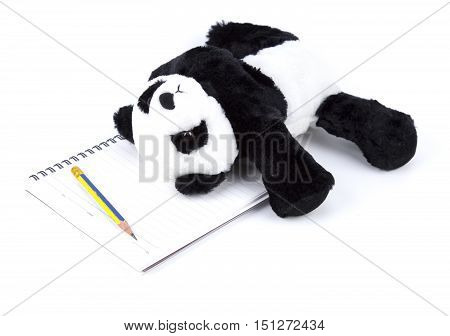 Panda Bear lay down on the note book and pencil on white isolated