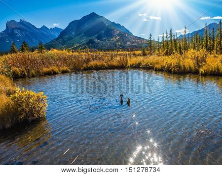 The Rocky Mountains, Canada. Magnificent sunset on lakes Vermilion in mountains National park Banff. Concept of ecotourism