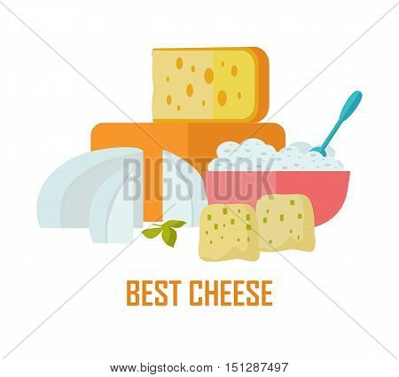 Best cheese banner. Different varieties of cheese pieces on white background. Natural farm food. Dairy product.