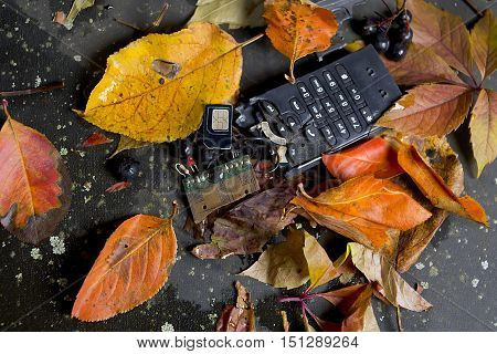 Pieces of broken phone laid on the ground covered with fallen leaves closeup studio shot
