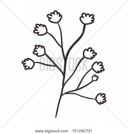plant with irregulars steam and flowers vector illustration