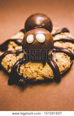 Frightening little spider monster with choc sauce legs and malted chocolate balls candy body. Halloween baked treat