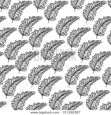 pattern silhouette branch with multiple leaves vector illustration