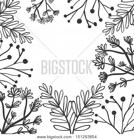 frame with a variety of plants vector illustration
