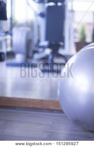 Gym Exercise Pilates Ball