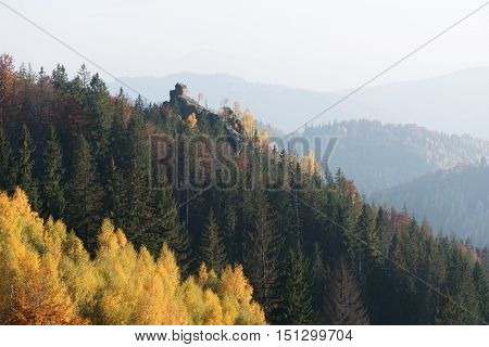 Autumn landscape with a rock. Birch and spruce forest in the mountains. Sunny day with haze. Carpathians, Ukraine, Europe