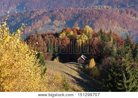 Autumn Landscape with forest. Wooden house in the mountain village. Beauty in nature. Carpathians, Ukraine, Europe