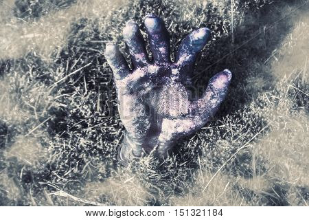 High Angle Colorized Still Life of Zombie Hand Emerging from Cemetery Grave Plot. Halloween Arising