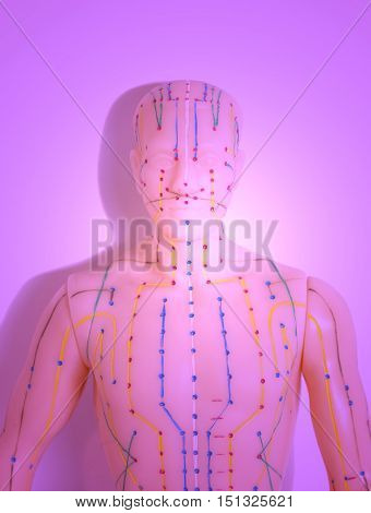 Medical acupuncture model of human body (anatomy)